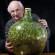 """Zapanjujući primjer fotosinteze: """"vrt"""" u zatvorenoj boci nije zalijevan preko 40 godina"""