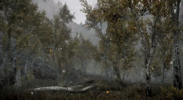 Ukleta šuma u Transilvaniji poznata kao rumunski Bermudski trougao