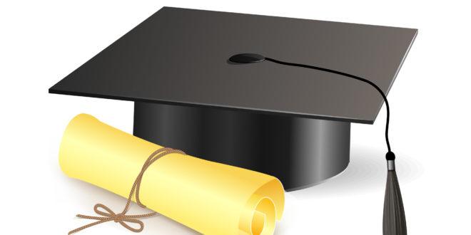 Falsifikovano 13 diploma
