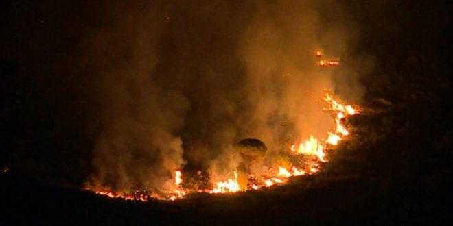 Sinoć je Banju Vrućicu zadesio požar koji je uspješno lokalizovan
