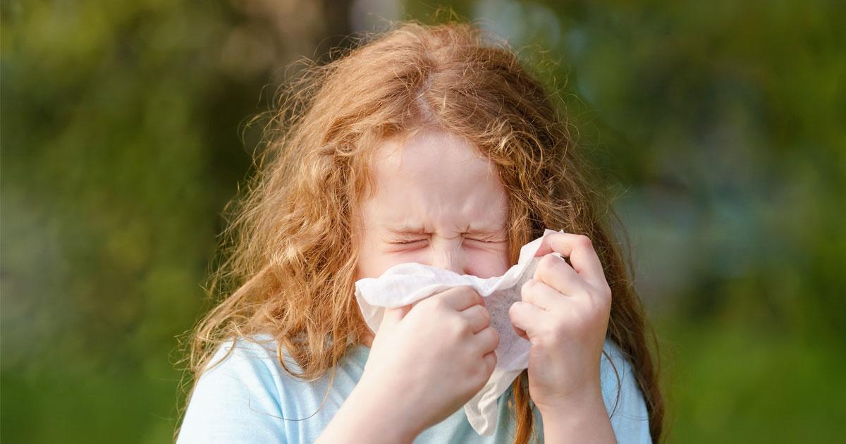 Alergija na polen ambrozije – kako je liječiti?